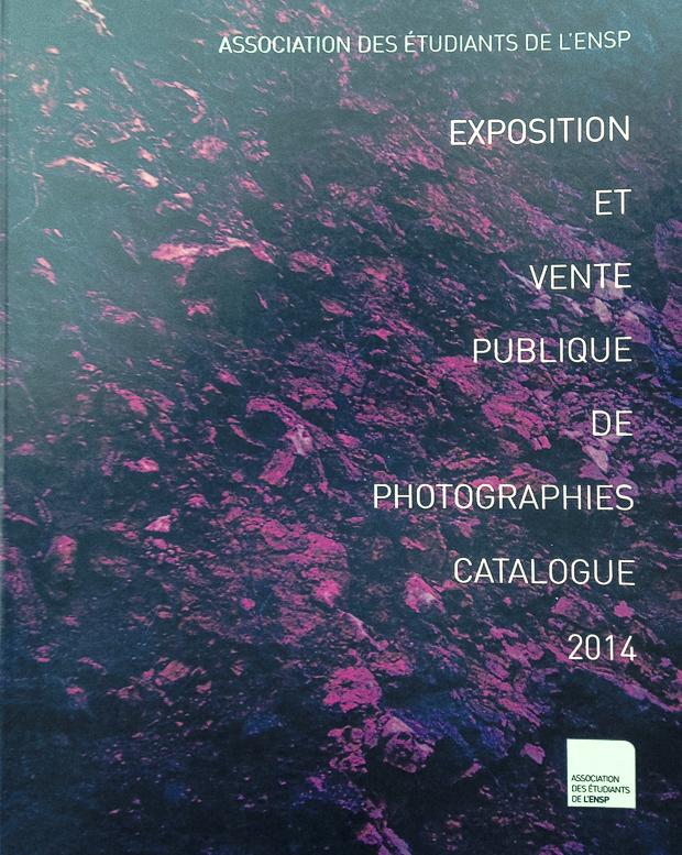 Les ventes aux enchères de photographies, Arles, 2014